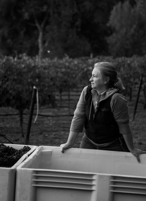 Jennifer Higgins, Winemaker
